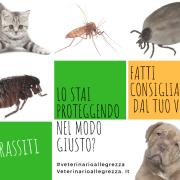 parassiti-prevenzione