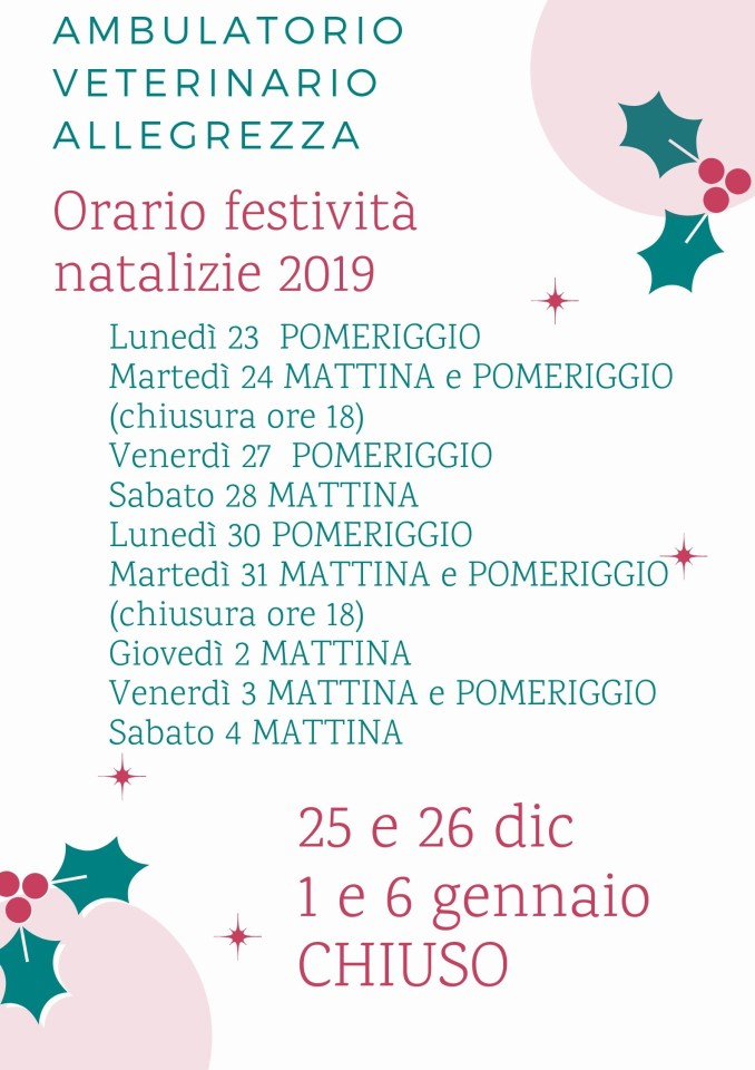 Orario festività natalizie 2019